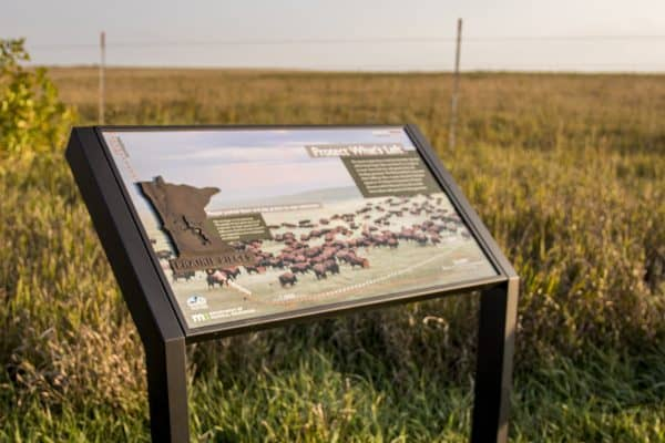 MN Bison Conservation Waysides